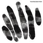 HOUND DOG TAYLOR'S HAND Hound Dog Taylor's Hand (2016) album cover