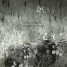IRO HAARLA Yarra Yarra (with Pepa Päivinen) album cover