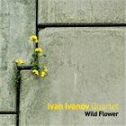IVAN IVANOV Wild Flower album cover