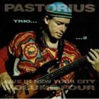 JACO PASTORIUS Live In New York City, Vol. 4: Trio 2 album cover