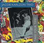 JACOB KARLZON Take Your Time album cover