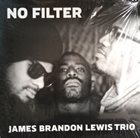 JAMES BRANDON LEWIS No Filter album cover