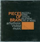 JERZY MAZZOLL Pieces Of Brain : Arhythmic Visible Music album cover