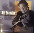 JOE GRANSDEN I Waited For You album cover