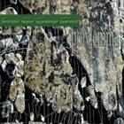 JOE HERTENSTEIN Polylemma album cover