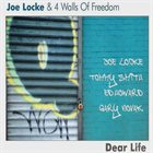 JOE LOCKE Dear Life album cover
