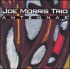 JOE MORRIS Antennae album cover