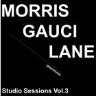 JOE MORRIS Joe Morris / Stephen Gauci / Adam Lane : Studio Sessions Vol.3 album cover
