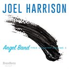 JOEL HARRISON Angel Band : Free Country Volume 3 album cover