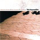 JOHANNES ENDERS Johannes Enders | Tony Scherr | Falk Willis : Trio Impossible album cover