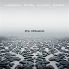JOSHUA REDMAN Still Dreaming album cover