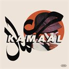 KAMAAL WILLIAMS Nights in Paris album cover