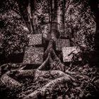 KAMASI WASHINGTON Harmony of Difference album cover