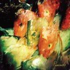 KEN VANDERMARK The Margots : Pescado album cover