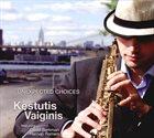 KĘSTUTIS VAIGINIS Unexpected Choices album cover
