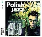 KUBA WIĘCEK Kuba Więcek Trio : Another Raindrop album cover