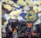 LOUIS MOHOLO Bush Fire album cover