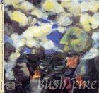 LOUIS MOHOLO Louis Moholo/Evan Parker/Pule Pheto/Gibo Pheto/Barry Guy Quintet : Bush Fire album cover