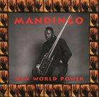 MANDINGO (FODAY MUSA SUSO) New World Power album cover