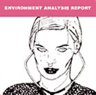 MANUEL MOTA Environmental Analysis Report album cover
