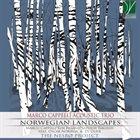 MARCO CAPPELLI Norwegian Landscapes album cover