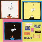 MASSIMO FARAÒ Live At The Blue Bird album cover