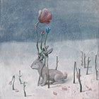 MATT ULERY Loom: Flora. Fauna. Fervor. album cover