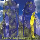 MICHAEL VLATKOVICH You're Too Dimensional album cover