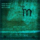 MYRA MELFORD Trio M : Big Picture album cover
