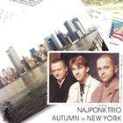 NAJPONK Autumn In New York album cover