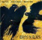 NAJPONK Naj Ponk, Robert Balzar, Martin Šulc : Birds In Black album cover