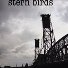 NATHAN CLEVENGER Stern Birds album cover