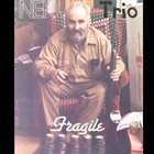 NEK TRIO Fragile album cover