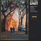 NEW YORK UNIT Akari album cover