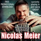 NICOLAS MEIER Mr. MoonJune Recommends: Nicolas Meier album cover
