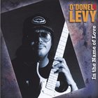O'DONEL LEVY In the Name of Love album cover