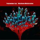 PANTOMIME JAZZ Metaform Ministration album cover