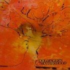 KLAUS DOLDINGER/PASSPORT Doldinger's Motherhood album cover