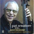 PAT SENATORE Ascensione album cover