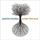 PATRICK BRADLEY Under the Sun album cover