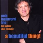 PETE MALINVERNI A Beautiful Thing! album cover