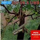 PETE RUGOLO Out On A Limb album cover