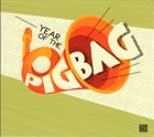 PIGBAG Year Of The Pigbag album cover