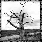 POPPY AJUDHA Patience album cover