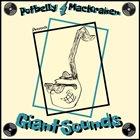 POTBELLY MACKRAKEN Giant Sounds album cover