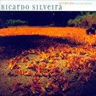 RICARDO SILVEIRA Outro Rio (Another River) album cover