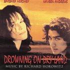 RICHARD HOROWITZ Drowning On Dry Land album cover