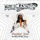 RICK JAMES Bustin' Out album cover
