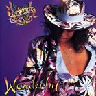 RICK JAMES Wonderful album cover