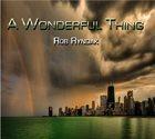 ROB RYNDAK A Wonderful thing album cover